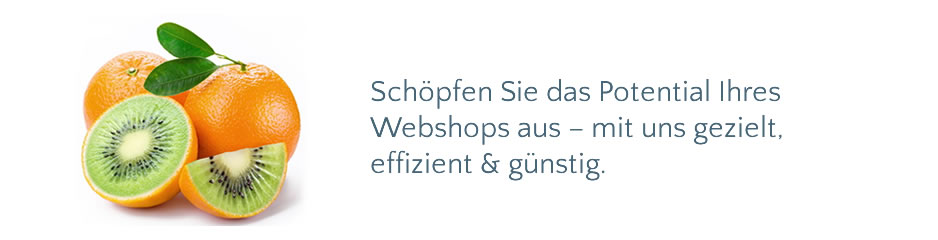 Banner OrangenApfel Startseite